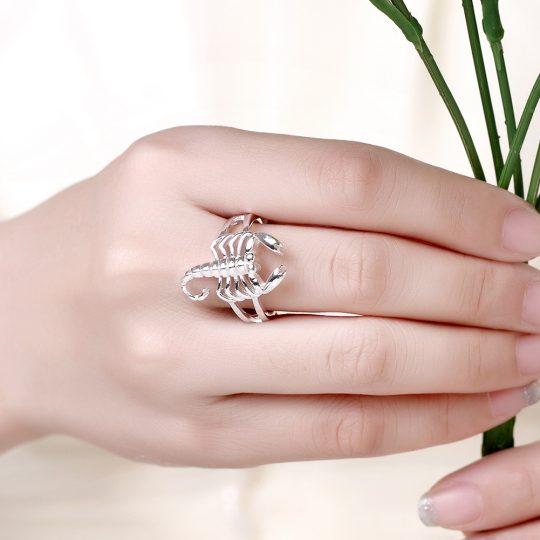 925 hõbe sõrmus-8622