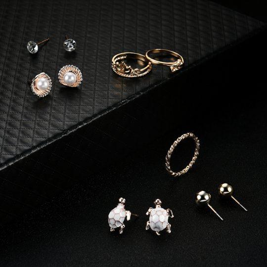 Sõrmuste ja kõrvarõngaste komplekt-8563